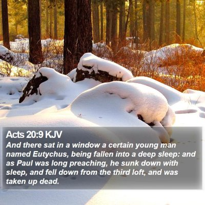 Acts 20:9 KJV Bible Verse Image