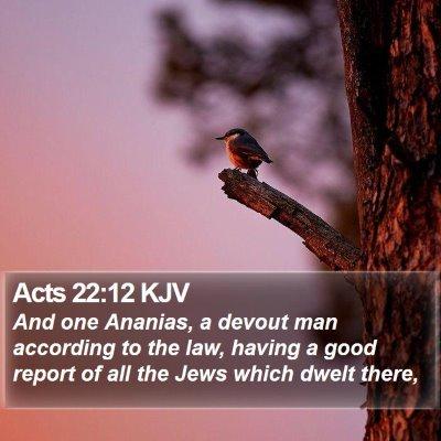 Acts 22:12 KJV Bible Verse Image