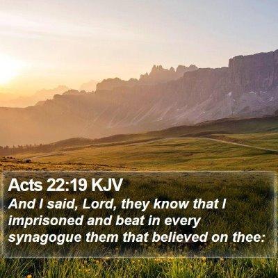 Acts 22:19 KJV Bible Verse Image
