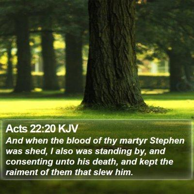 Acts 22:20 KJV Bible Verse Image