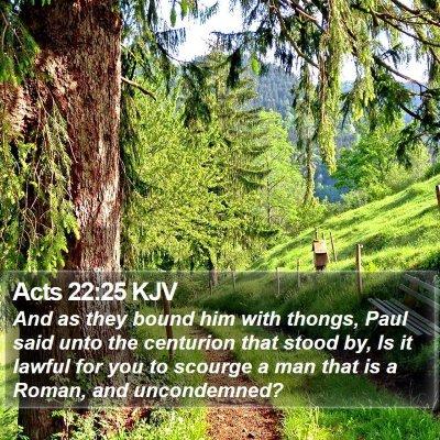 Acts 22:25 KJV Bible Verse Image