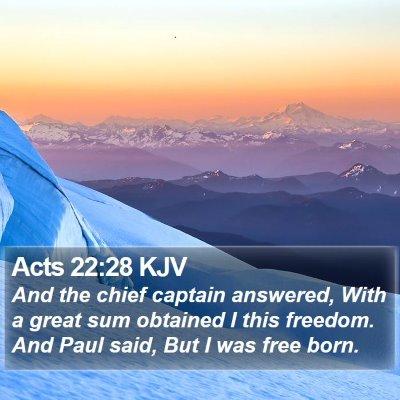 Acts 22:28 KJV Bible Verse Image