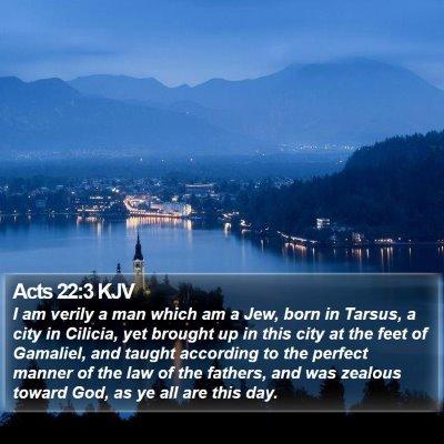 Acts 22:3 KJV Bible Verse Image