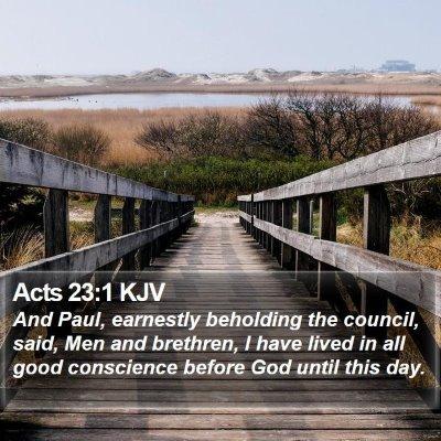 Acts 23:1 KJV Bible Verse Image