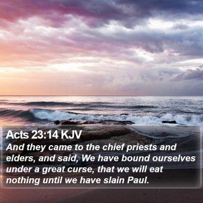 Acts 23:14 KJV Bible Verse Image