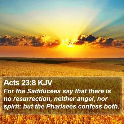 Acts 23:8 KJV Bible Verse Image