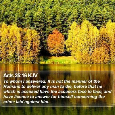 Acts 25:16 KJV Bible Verse Image