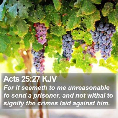 Acts 25:27 KJV Bible Verse Image