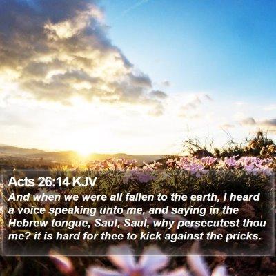 Acts 26:14 KJV Bible Verse Image