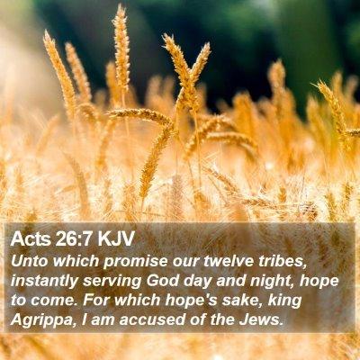 Acts 26:7 KJV Bible Verse Image