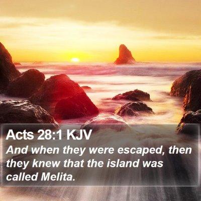 Acts 28:1 KJV Bible Verse Image