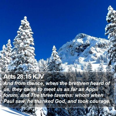 Acts 28:15 KJV Bible Verse Image