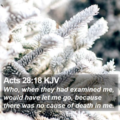 Acts 28:18 KJV Bible Verse Image