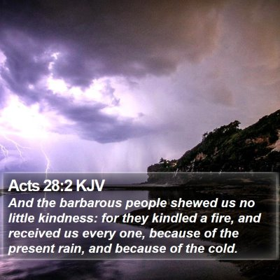 Acts 28:2 KJV Bible Verse Image