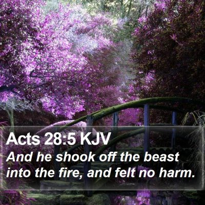 Acts 28:5 KJV Bible Verse Image