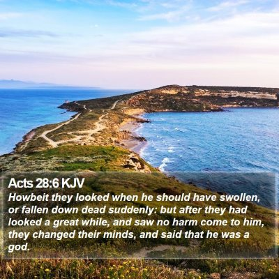 Acts 28:6 KJV Bible Verse Image