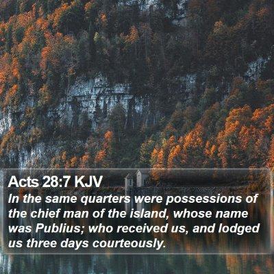 Acts 28:7 KJV Bible Verse Image