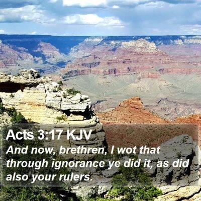 Acts 3:17 KJV Bible Verse Image