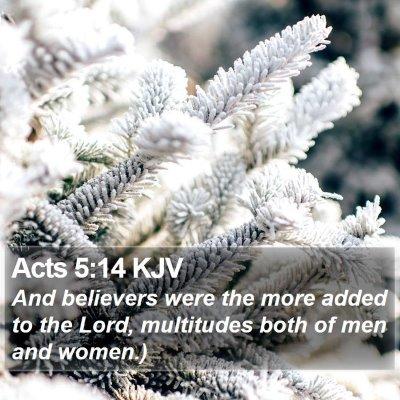 Acts 5:14 KJV Bible Verse Image
