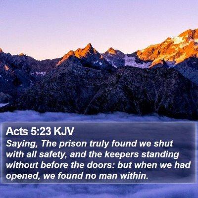 Acts 5:23 KJV Bible Verse Image