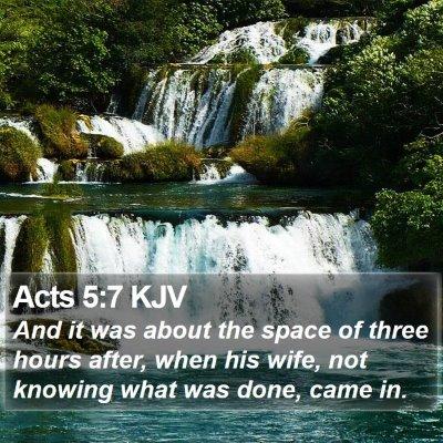 Acts 5:7 KJV Bible Verse Image