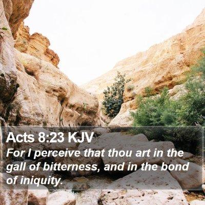 Acts 8:23 KJV Bible Verse Image