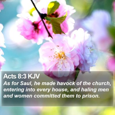Acts 8:3 KJV Bible Verse Image
