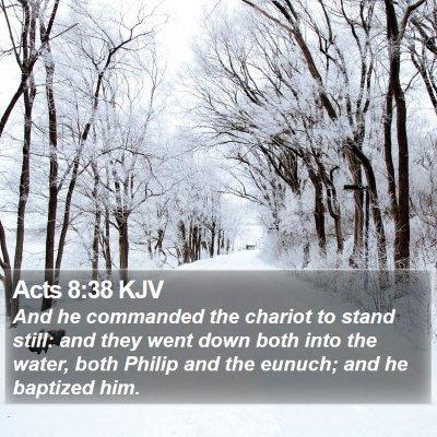 Acts 8:38 KJV Bible Verse Image