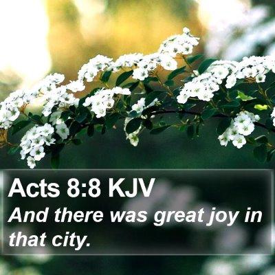 Acts 8:8 KJV Bible Verse Image