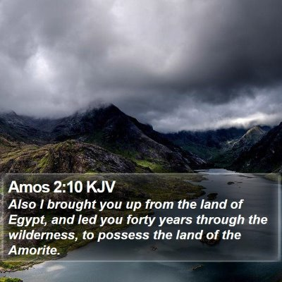 Amos 2:10 KJV Bible Verse Image