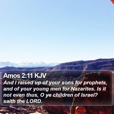 Amos 2:11 KJV Bible Verse Image