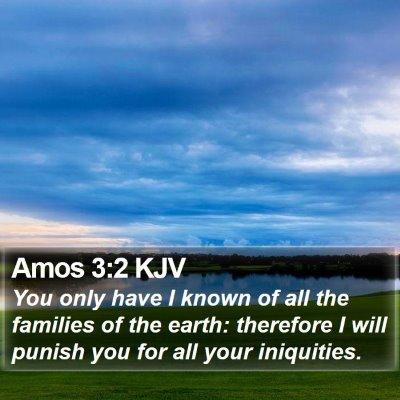 Amos 3:2 KJV Bible Verse Image