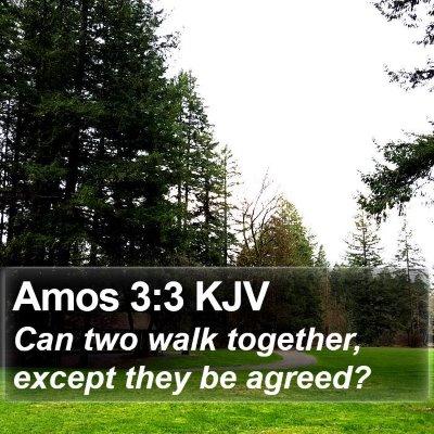 Amos 3:3 KJV Bible Verse Image