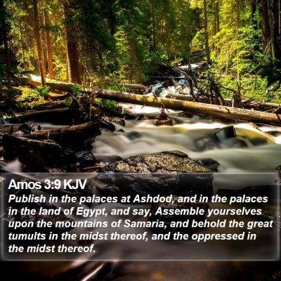 Amos 3:9 KJV Bible Verse Image
