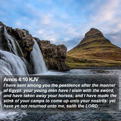 Amos 4:10 KJV Bible Verse Image