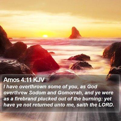 Amos 4:11 KJV Bible Verse Image