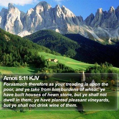 Amos 5:11 KJV Bible Verse Image