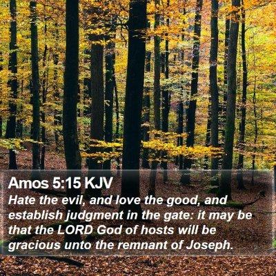 Amos 5:15 KJV Bible Verse Image