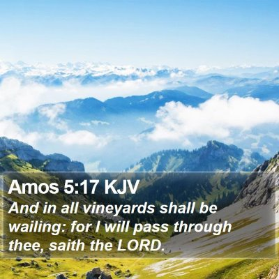 Amos 5:17 KJV Bible Verse Image