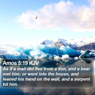 Amos 5:19 KJV Bible Verse Image