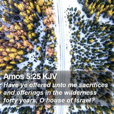 Amos 5:25 KJV Bible Verse Image
