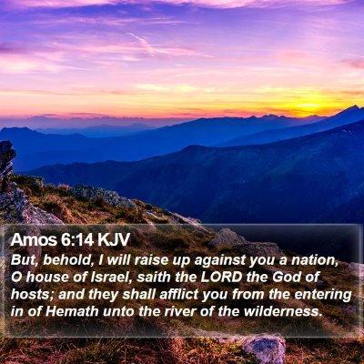 Amos 6:14 KJV Bible Verse Image