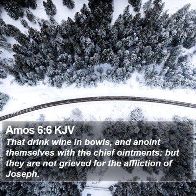 Amos 6:6 KJV Bible Verse Image