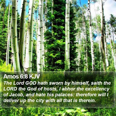 Amos 6:8 KJV Bible Verse Image