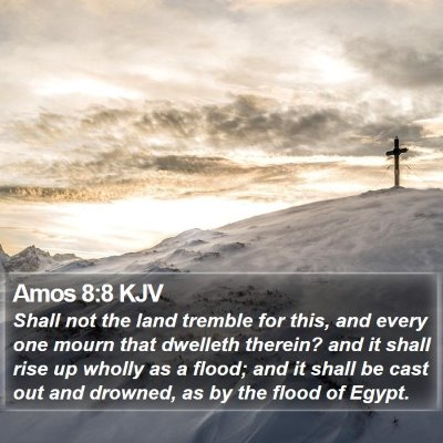 Amos 8:8 KJV Bible Verse Image