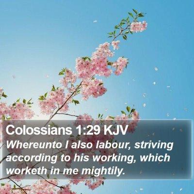 Colossians 1:29 KJV Bible Verse Image