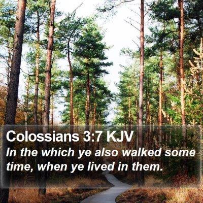 Colossians 3:7 KJV Bible Verse Image