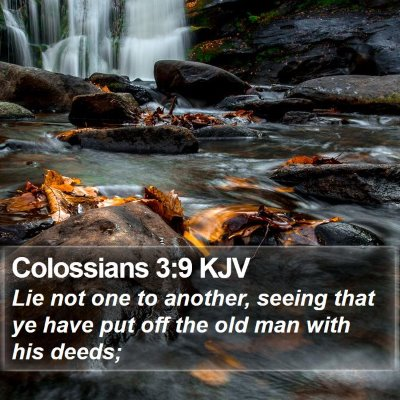 Colossians 3:9 KJV Bible Verse Image