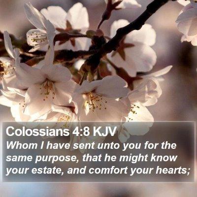 Colossians 4:8 KJV Bible Verse Image