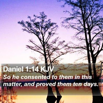 Daniel 1:14 KJV Bible Verse Image